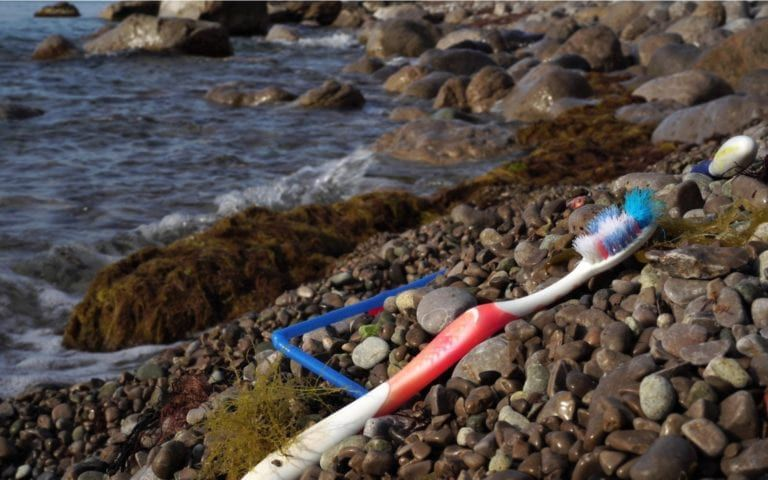 Toothbrush washed up on a beach