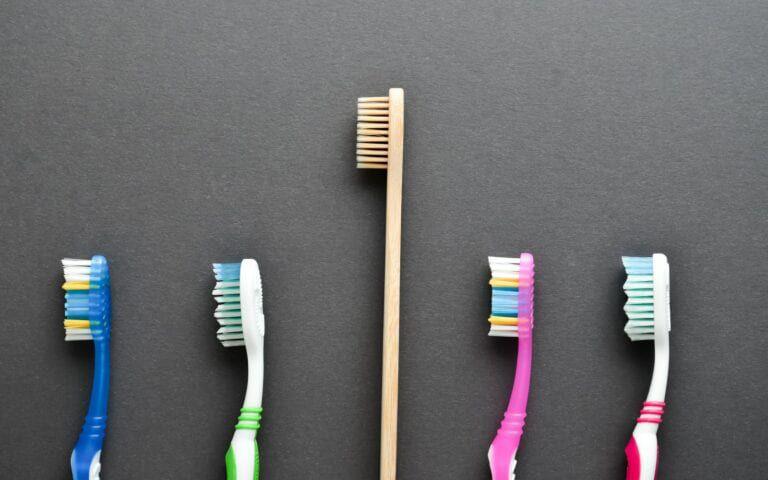 Bamboo brush raised above plastic ones